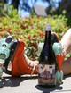 2020 Once Upon a Time in Mendocino, Carbonic Pinotage, Mendocino County, Open Hand Ranch - View 3